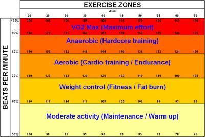800px-Exercise_zones.JPG