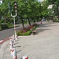 03.市府前筆直的腳踏車專用道.JPG