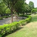 10.綠油油的公園草坪.JPG