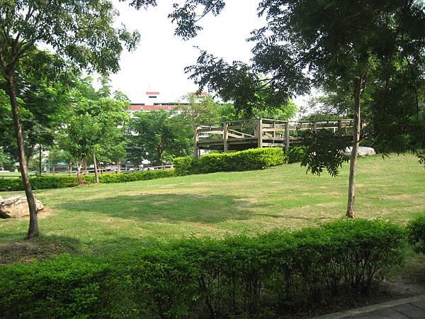 12.陽光和綠草坪.JPG