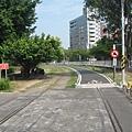 37.風景優美的臨港線鐵馬道.JPG