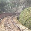 阿里山小火車鐵道.JPG