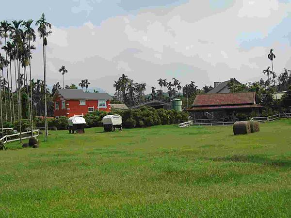 綠油油的草原-s.jpg