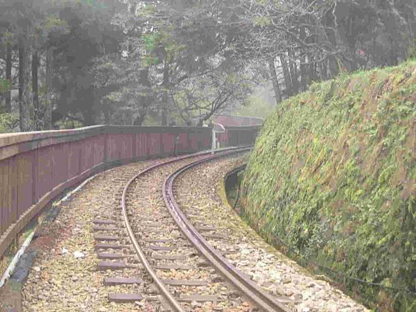 阿里山小火車鐵道-s.jpg