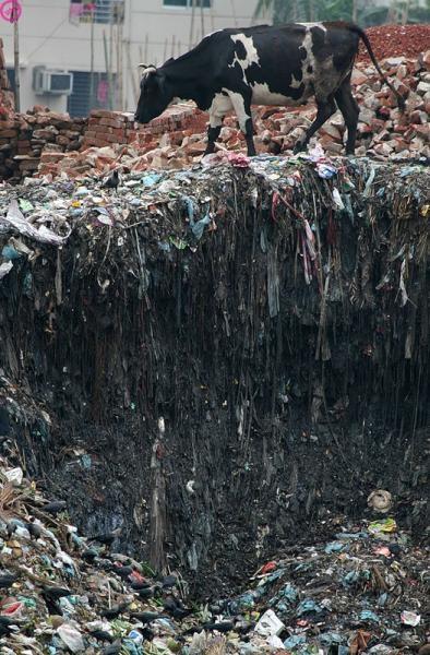 礦泉水造成的汙染7