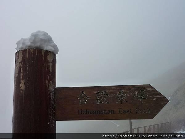 下了一夜的雪.JPG
