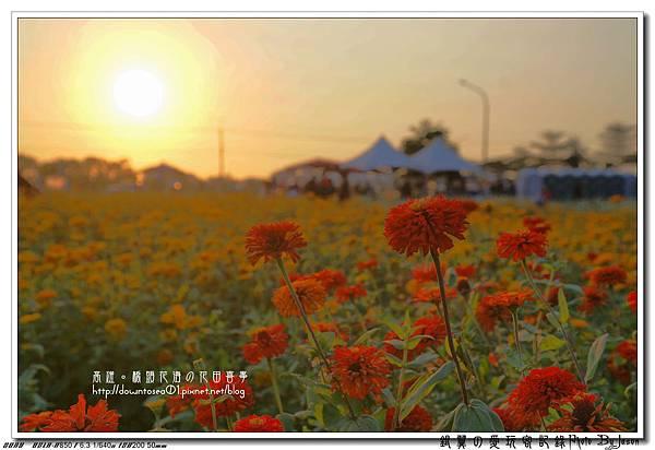 DSC01064_副本.jpg