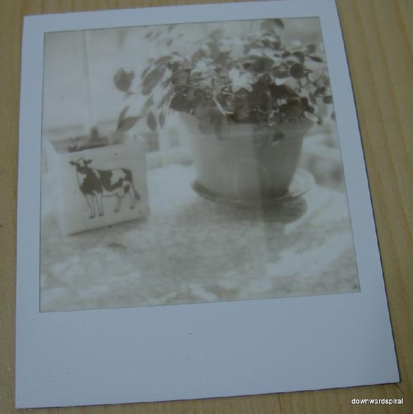 PX600UV_40.jpg