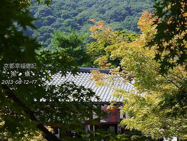 京阪神自由行DAY2-1000364.jpg