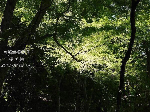 京阪神自由行DAY2-1000437.jpg