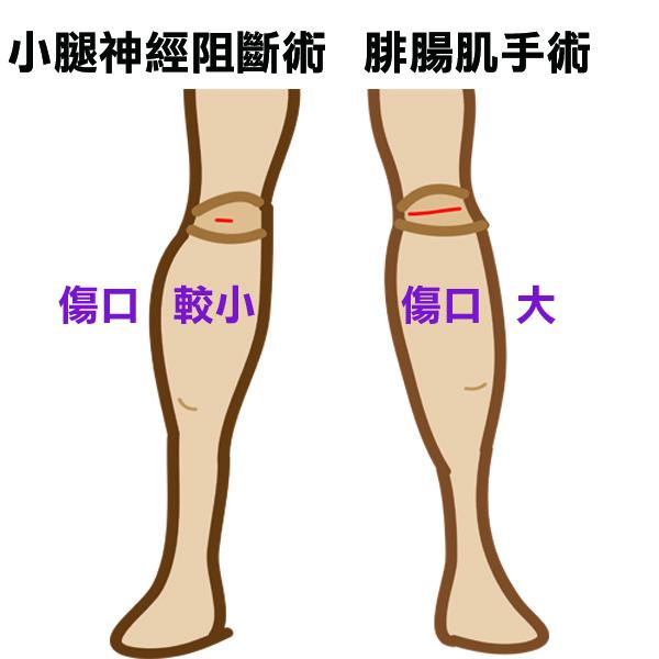 傷口大小比較示意圖.jpg