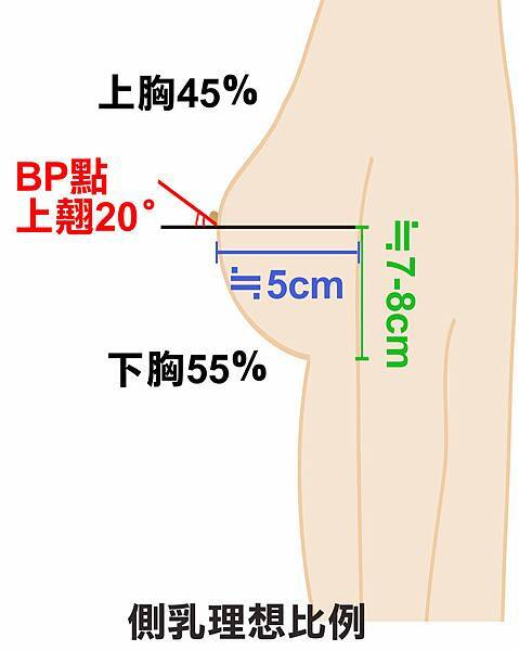 側乳占比.jpg