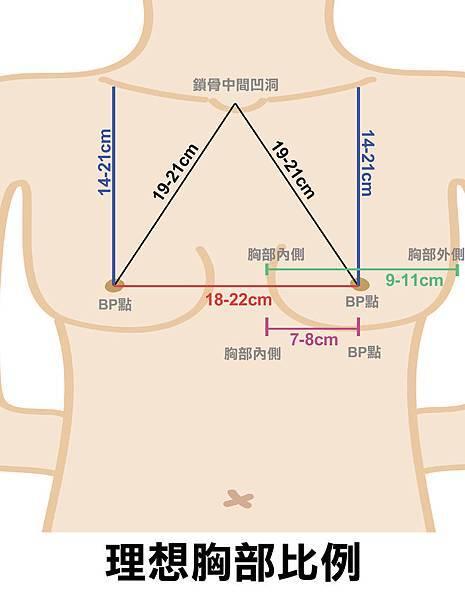 胸部黃金三角圖.jpg