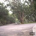 最空曠的一條路.jpg