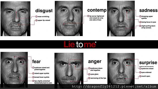 Microexpression___Lie_to_me_by_il_Paciato