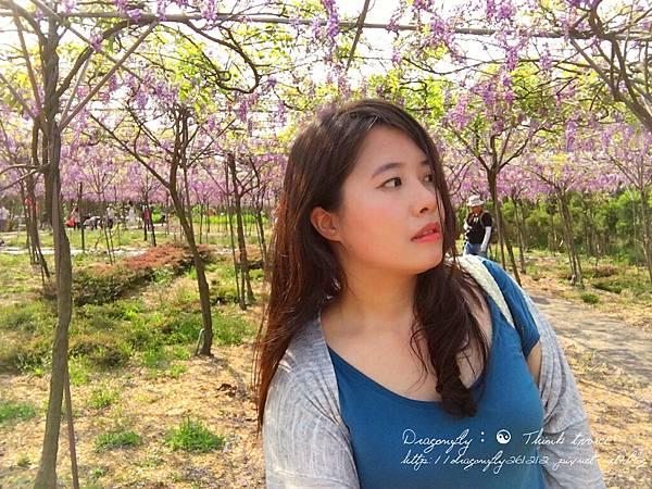 20170410天元宮櫻花、紫藤園雙享受_170412_0118_副本.jpg