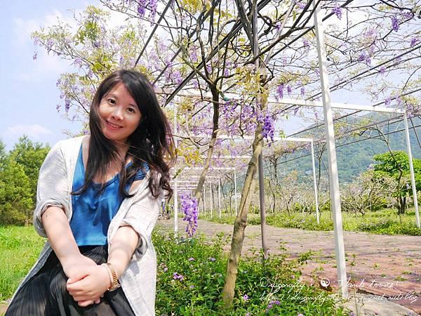 20170410天元宮櫻花、紫藤園雙享受_170412_0133_0_副本.jpg
