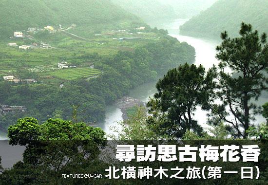 尋訪思古梅花香-北橫神木之旅(第一日)