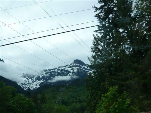 看到五月雪,非常興奮