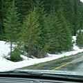 路旁就有積雪噢,外面是二到三度!!