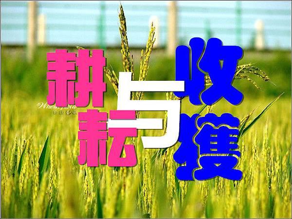 耕耘_副本