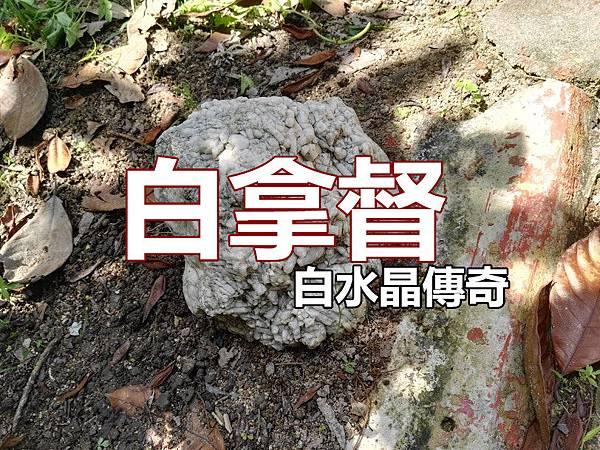 img_20160612_125904 - copy_副本.jpg
