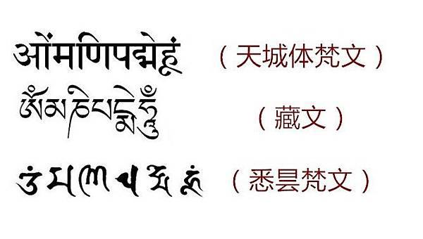 9梵文藏文悉昙文.jpg