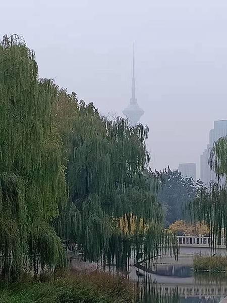 WeChat 圖片_20191022121405.jpg