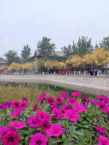 WeChat 圖片_20191022121421.jpg