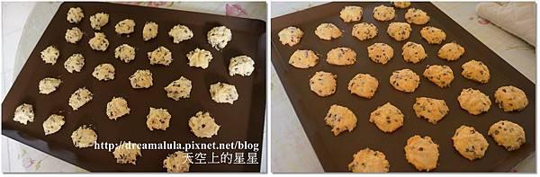 1-16-2 巧克力豆餅乾.jpg