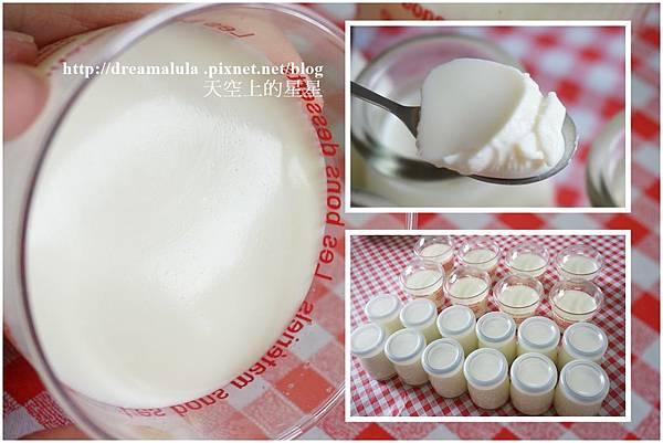 布丁奶酪No1-6.jpg