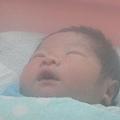 出生第3天.這是在育嬰室外面拍的