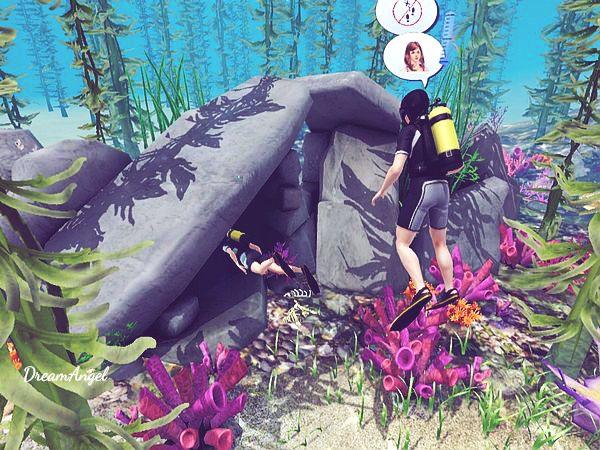 IslandParadise_07.jpg