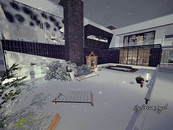 Akita_43.jpg