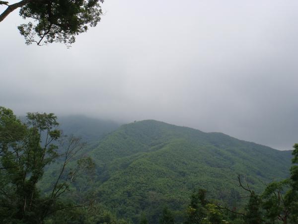 好美的景色...霧矇矇的