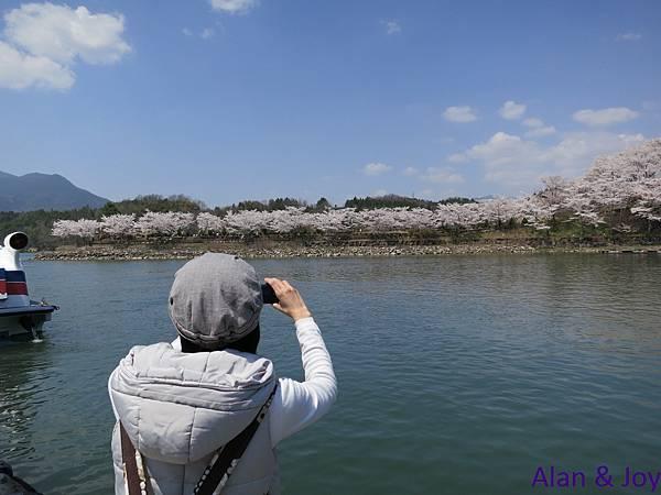 11.不過我對坐遊船沒啥太大興趣,反倒是對其岸邊滿開的櫻花有絕佳的興緻