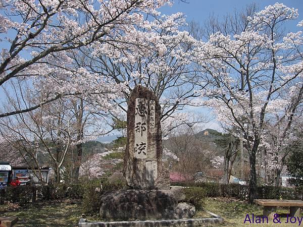 16.被櫻花環繞的惠那峽石碑