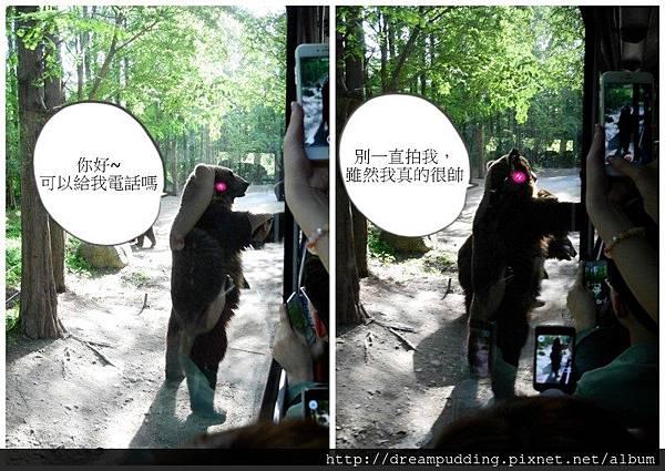 愛寶樂園6.jpg