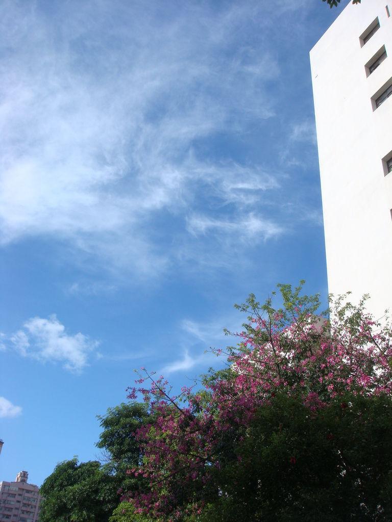 藍天白雲好天氣