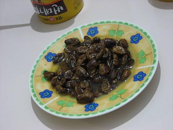 韓國人愛吃的蛹罐頭,聽說宋慧喬也愛吃