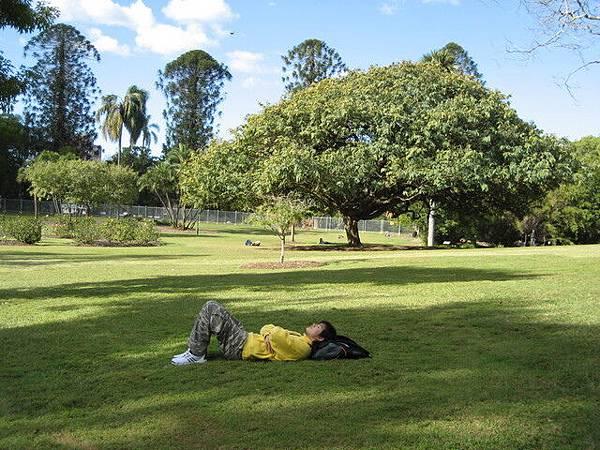 冒充大學生躺大草皮,可是感覺真的很好ㄟ