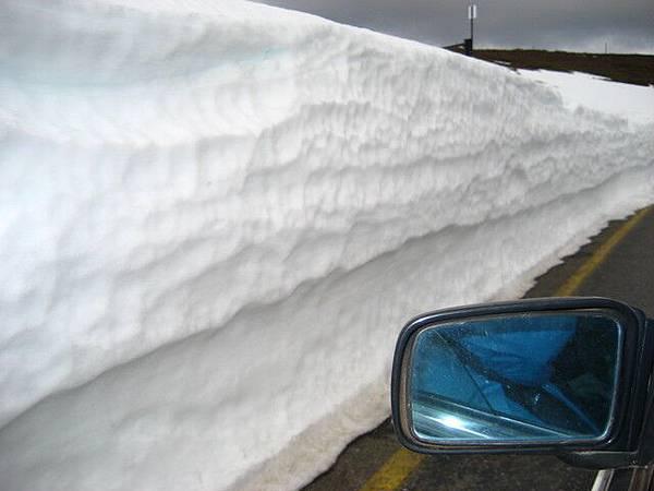 路邊景色也是一絕,不知怎麼地弄出一道雪牆