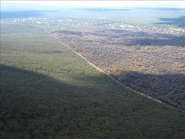 這國家公園數年前燒毀73%,高處俯瞰一目了然