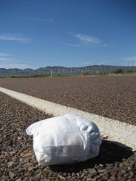 雖然美景依舊,可是卻有尿布被丟在馬路邊...而且超多