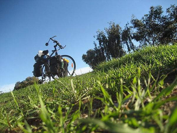 翠綠的草皮,爆藍的天空..哇..