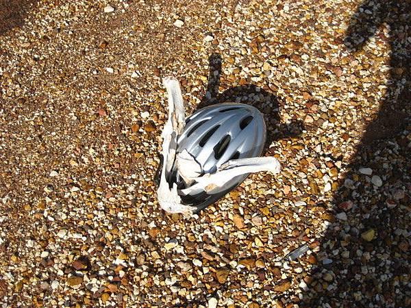Eli安全帽上的戰利品也因車禍而碎裂
