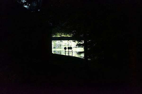 ㄧ個轉彎後,從樹林間窺探到一些視野!!~