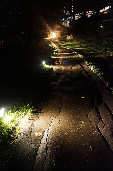 前往水之教堂的道路...