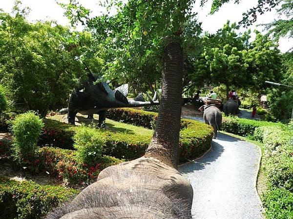 0302皇泰極綠野暹蹤之叢林騎象吃樹葉.jpg