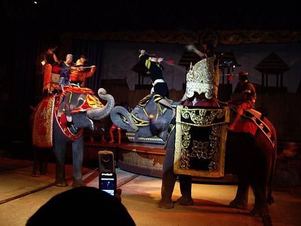 0305東芭樂園之模擬大象戰.JPG
